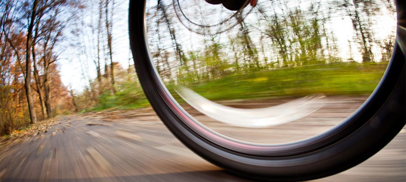 M.Gale & Associates nonprofit consulting Dallas Bike MS